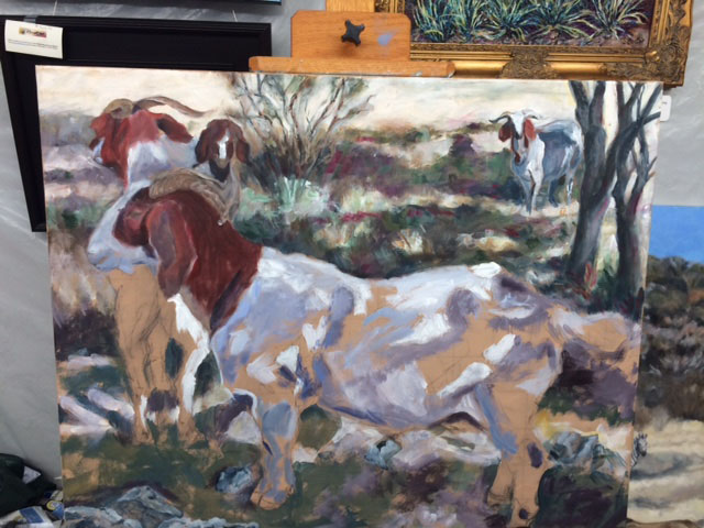 Boer Goats in the Shadows1